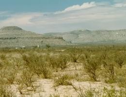 2000_TX_Longfellow2